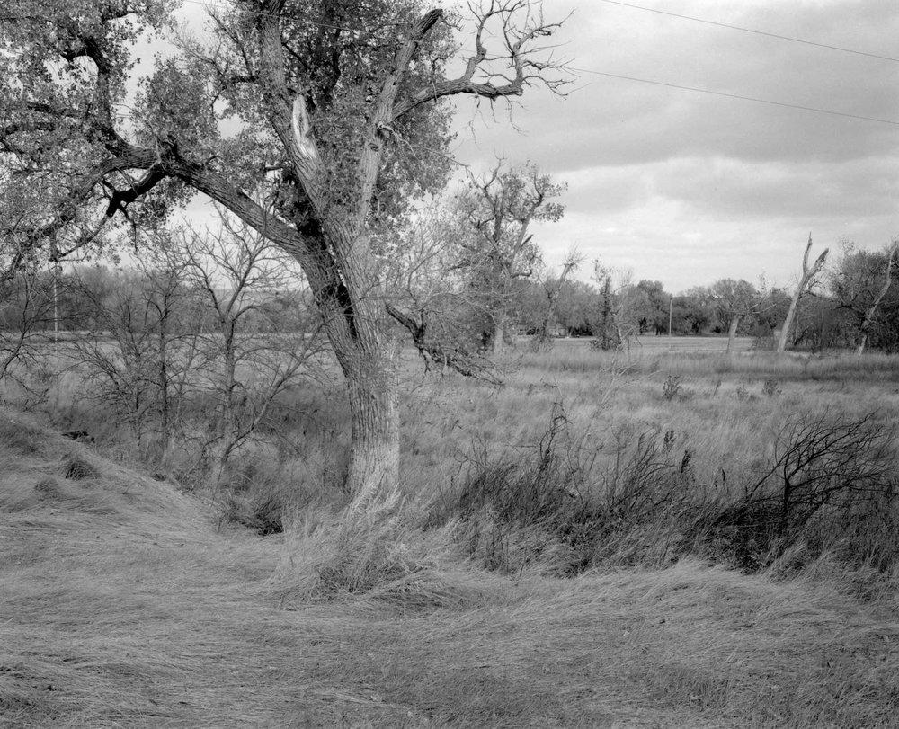 Plains_07.jpg