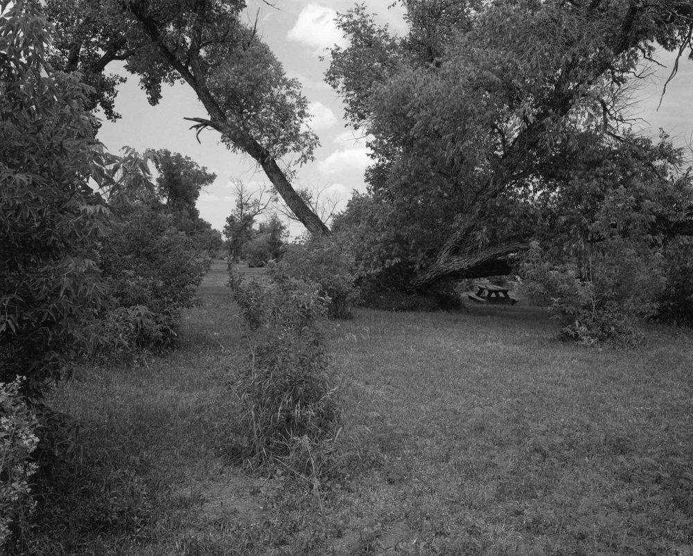 Plains_43.jpg