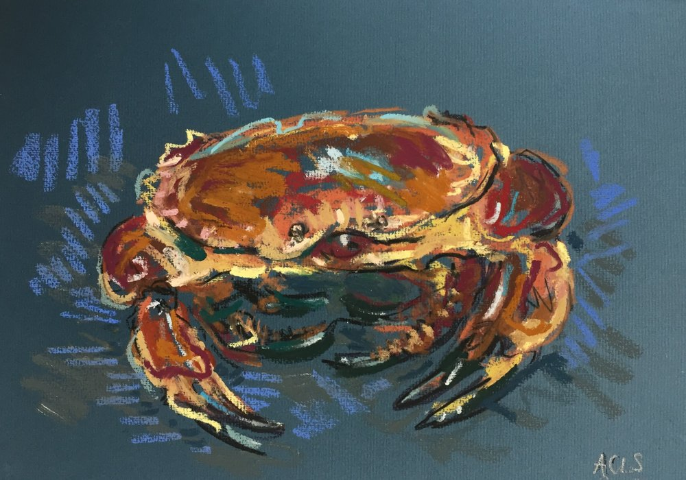 Cornish Crab 1.JPG
