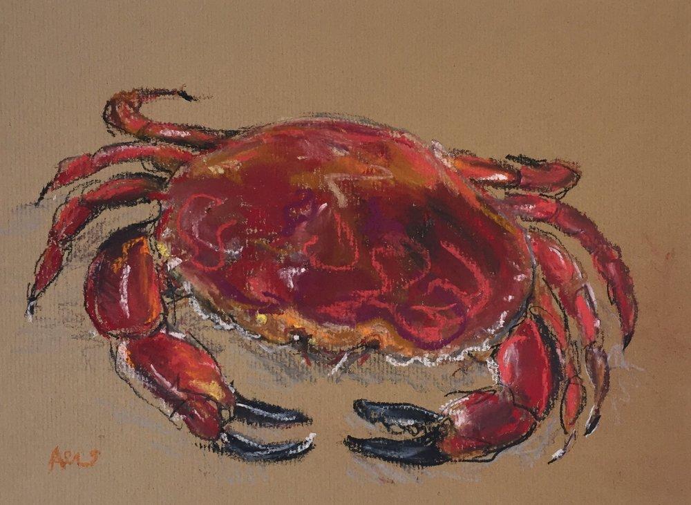 Red Crab 3.JPG