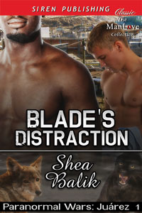 sb-pwj-bladesdistraction3.jpg