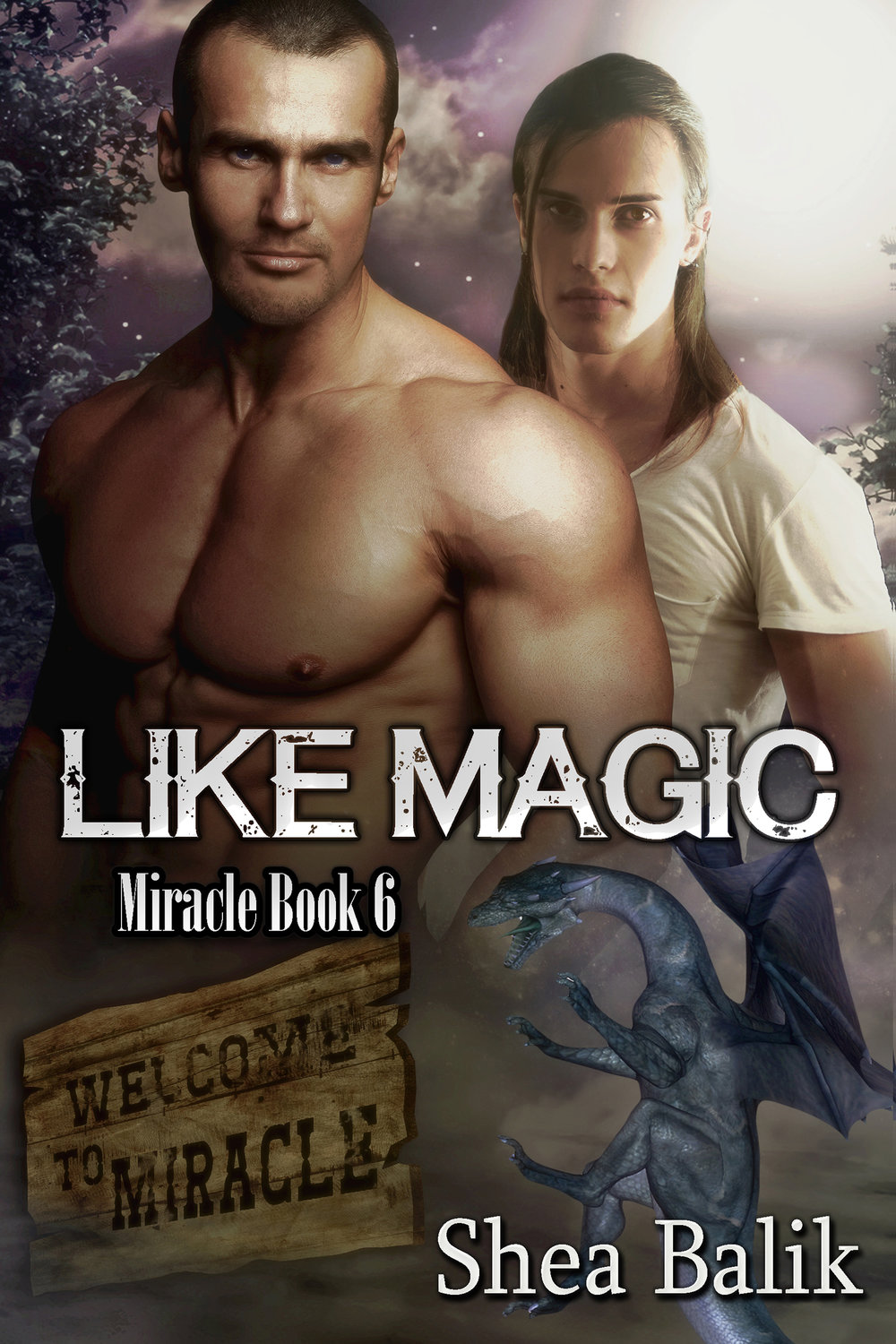 Like Magic, Miracle Book 6