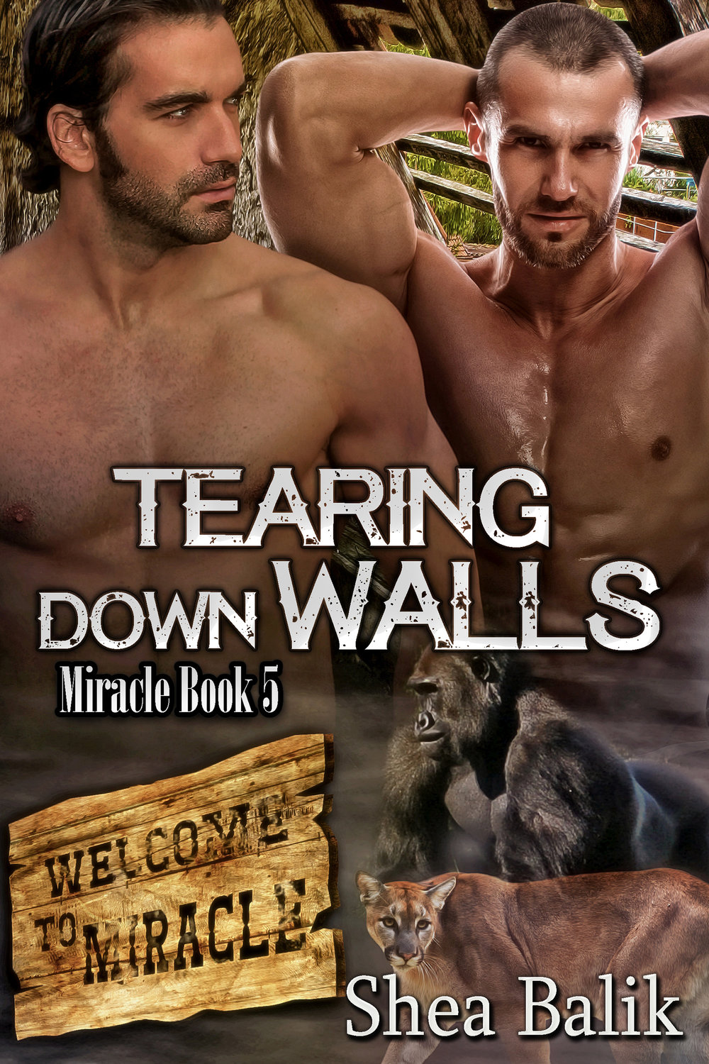 Tearing Down Walls, Miracle Book 5