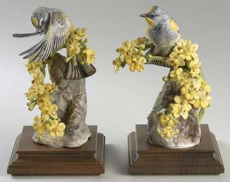 Audubon Warblers & Palo Verdi.jpg