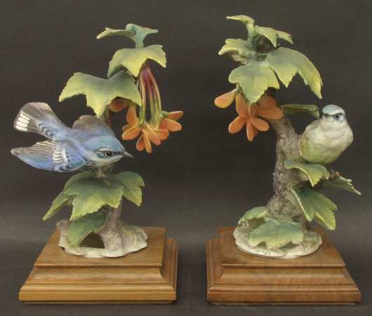 Cerulean Warblers & Red Maple.jpg