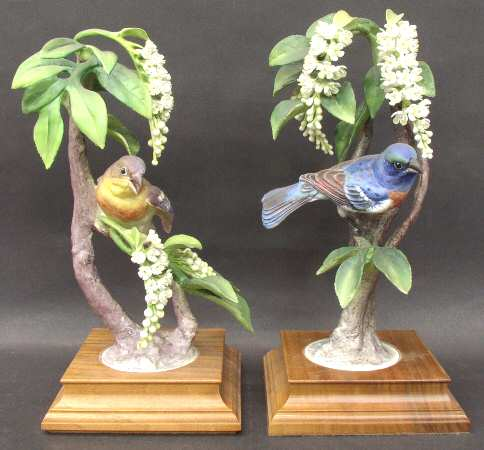 Lazuli Buntings & Choke Cherry.jpg
