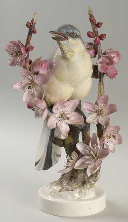 Mockingbird hen & Peachblossom.jpg