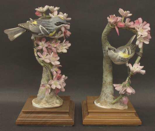 Myrtle Warblers & Weeping Cherry.jpg
