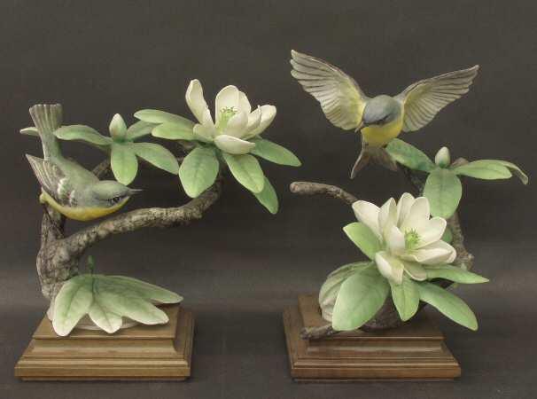 Parula Warblers & Sweet Bay.jpg