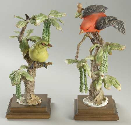 Scarlet Tanagers & White Oak.jpg