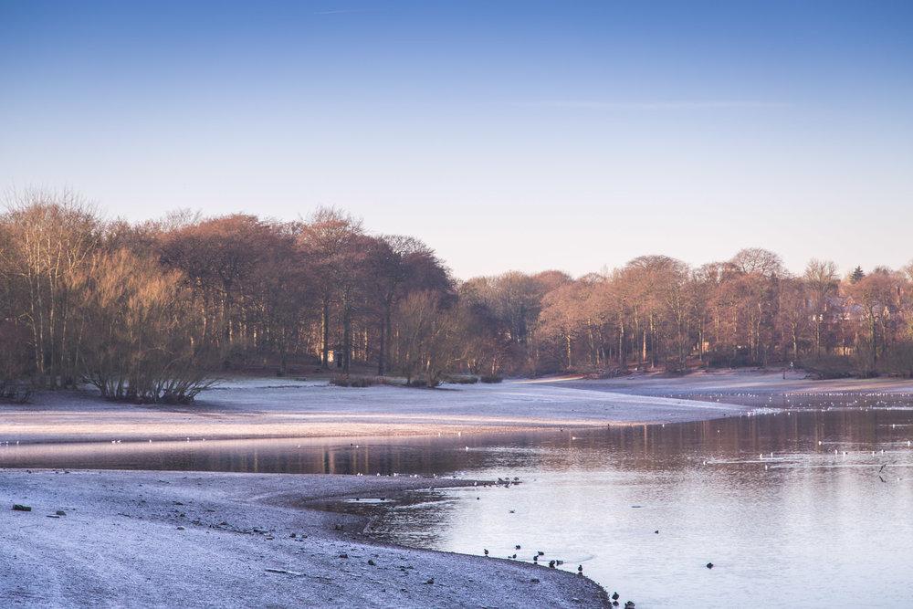 Frosty morning on the banks of Edgbaston Reservoir, Birmingham