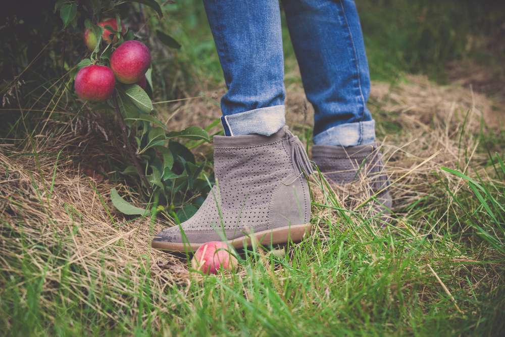 mademoiselle jules mlle apple picking quinn farm lifestyle blog isabel marant boots