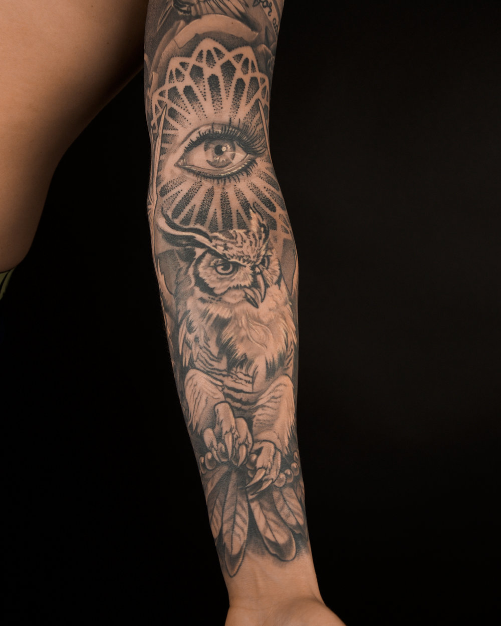 healed all seen owl .jpg
