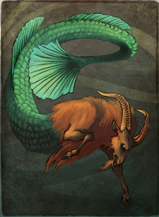 Capricorn Mergoat