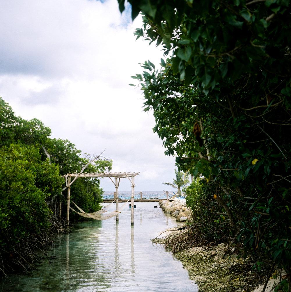 Travel Photography- Film Photography- Aruba- Olivia Christina Photo-4.JPG