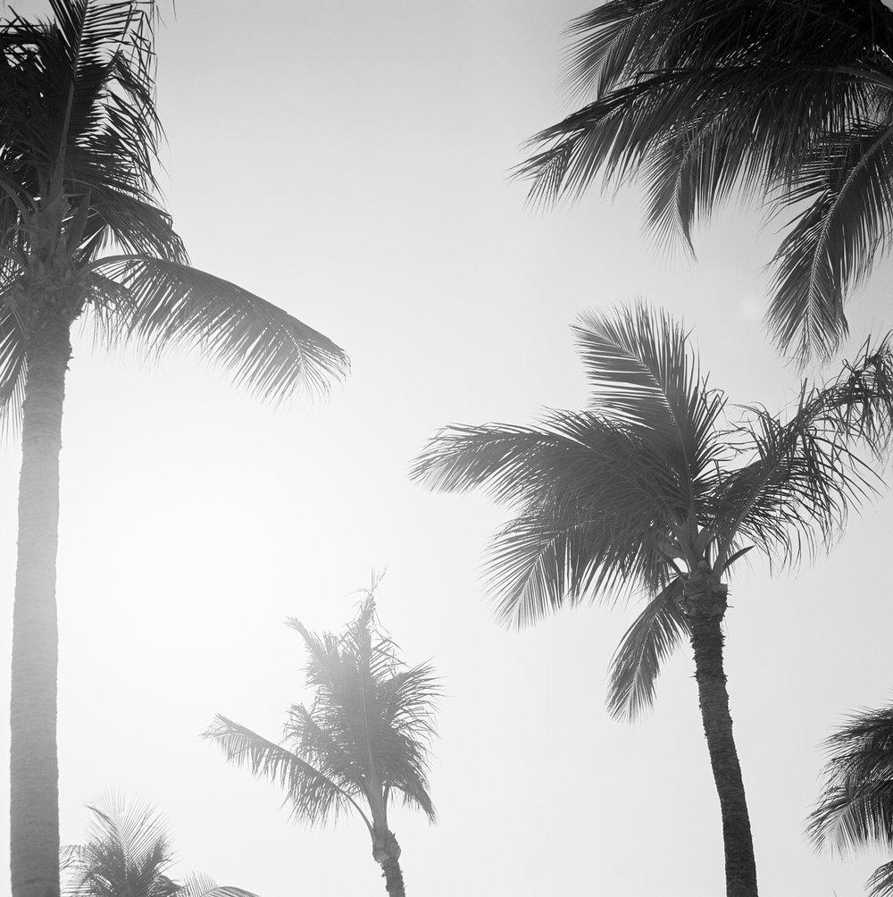 Travel Photography- Film Photography- Aruba- Olivia Christina Photo-3.JPG