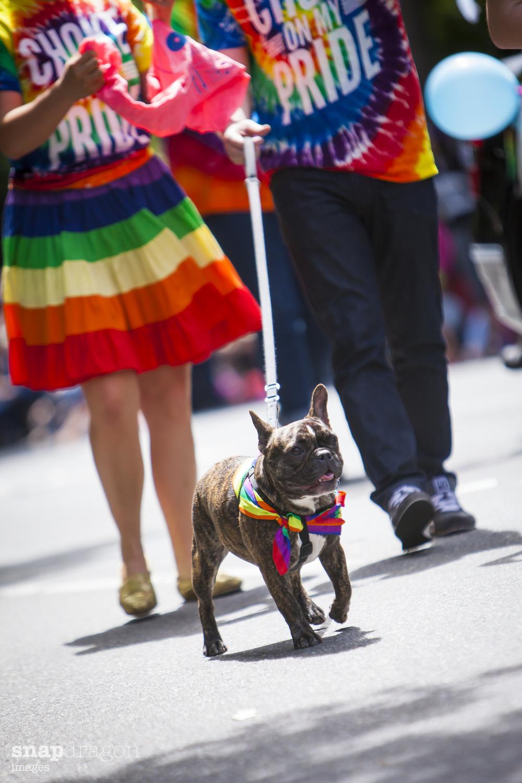 Pride-69.jpg