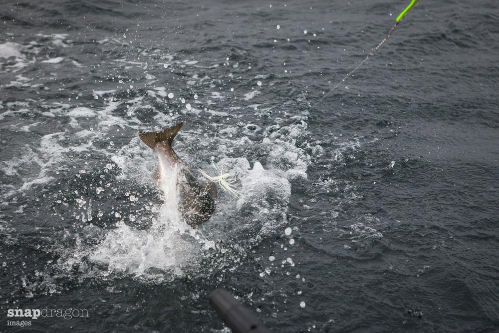 fall fishing-10.jpg