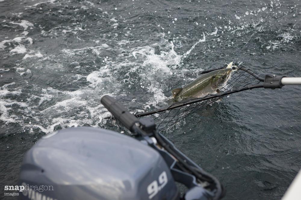 fall fishing-11.jpg