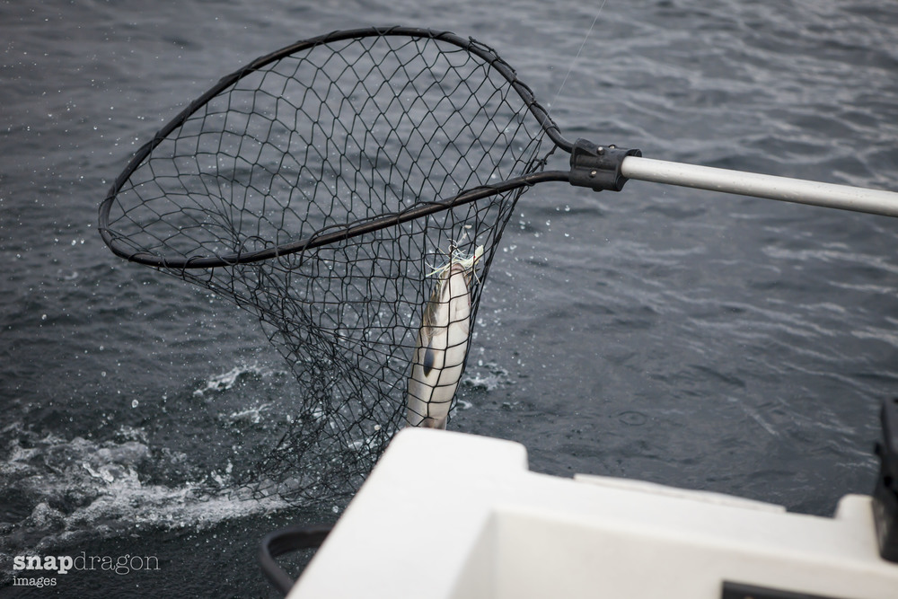 fall fishing-12.jpg