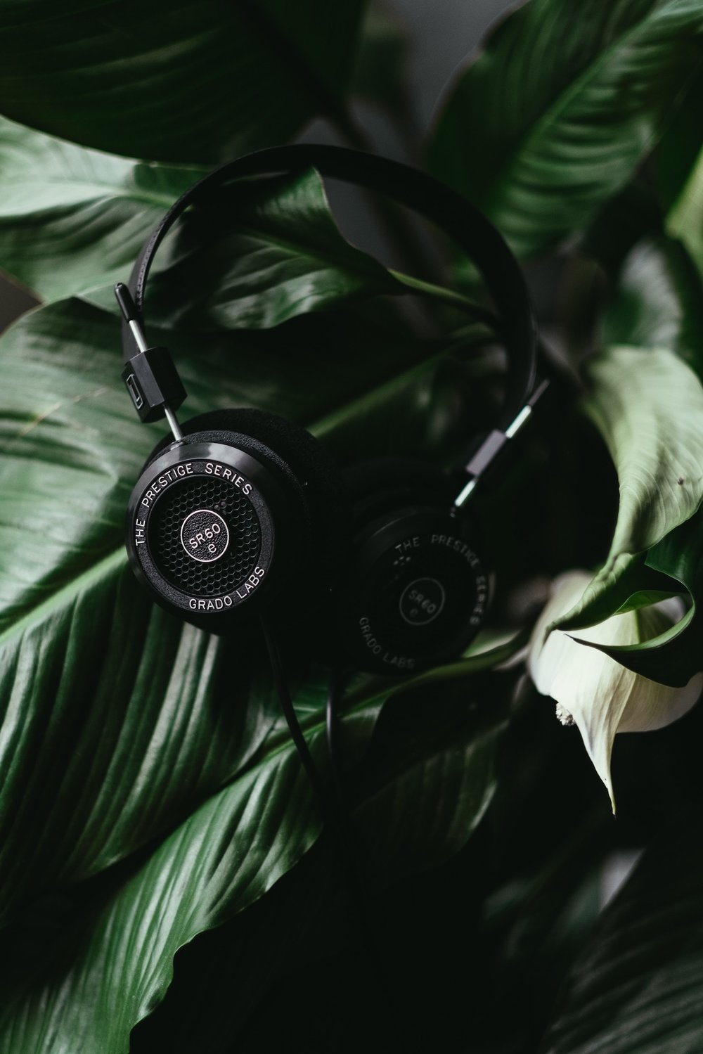 Grado - A company that hasn't advertised since 1964, Tia works with Grado to create their brand's social presence. Tia also nurtured critical partnerships including JetBlue, Skillshare, Brooklyn Kitchen & more.Location: Brooklyn, NYRole: Freelance Marketing Consultant