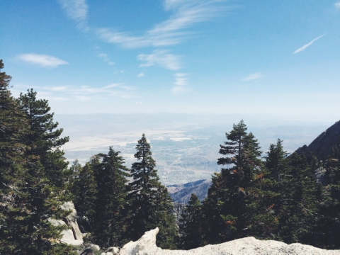 View from the top of Mount San Jacinto State Park.