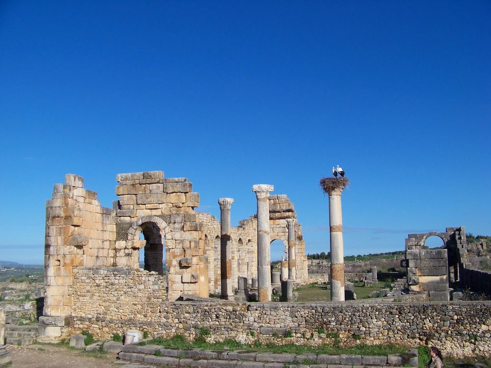 Photo by Celene Ba  Columns - The Roman ruins of Volubilis.      rrera