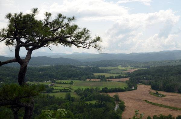 CastleRock View