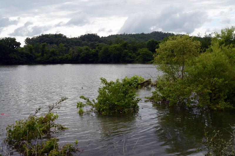 Flood-1