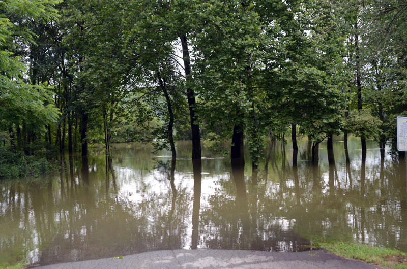 Flood-12