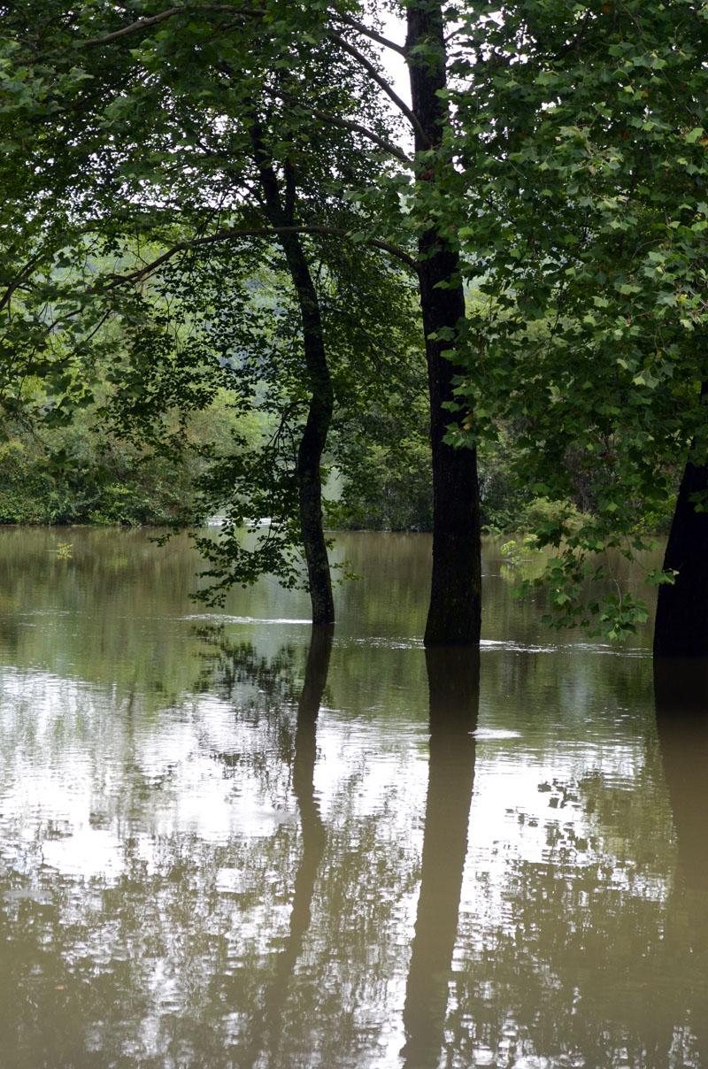 Flood-13