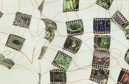 Crystallographic - Sian Martin