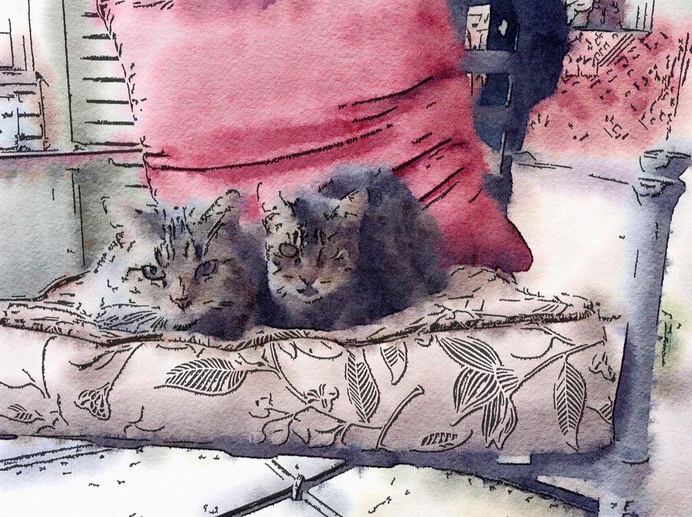 Francine & Hammy -