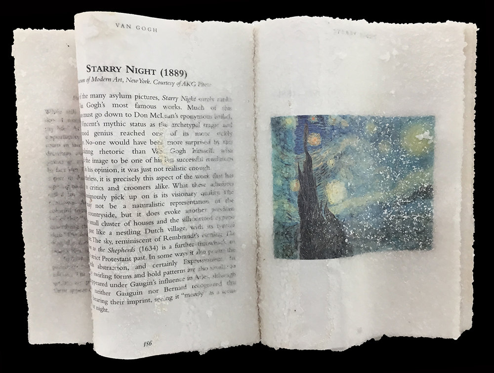 Stary Night Crystal Book.jpg
