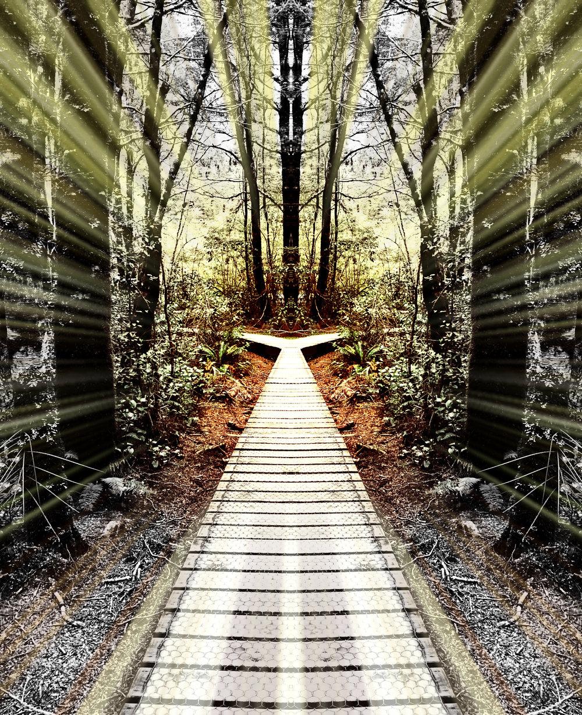 8. The Road Less Taken.jpg