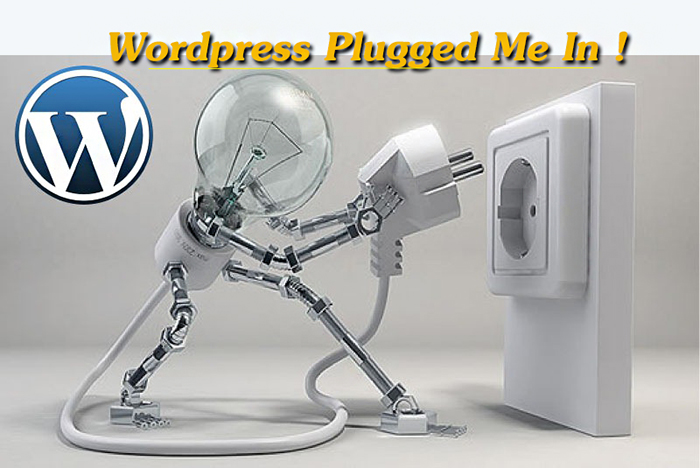 I Love Wordpress Plug Me In   Source