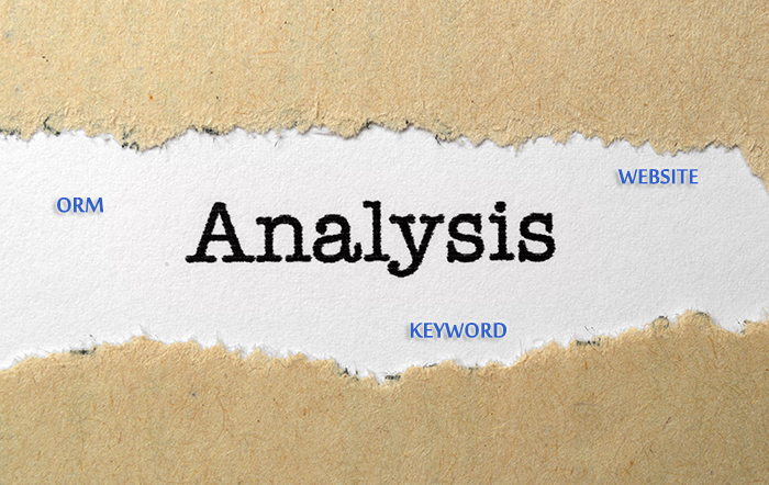 Take A Look Website Keyword ORM Analysis   Source