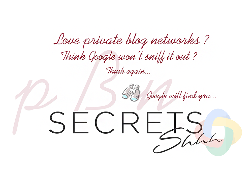Shhh I Have A Secret About Private Blog Networks And Google Source