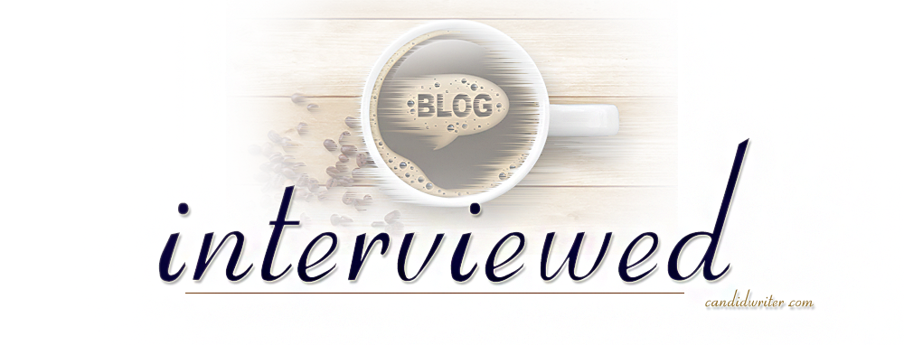 Ask Me A Question Blogger Interview Questions   Source