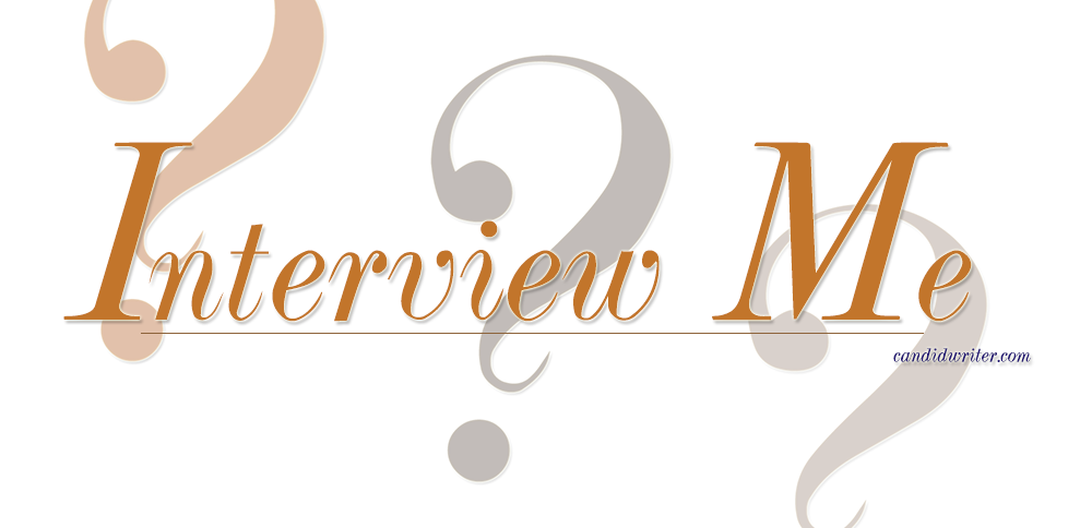 Interview Questions For Bloggers So Ask Questions Source
