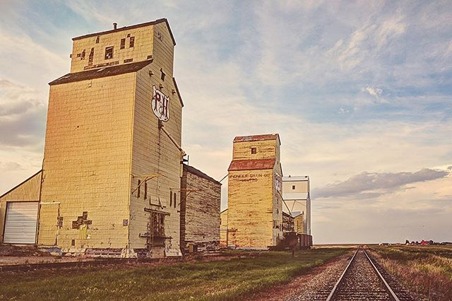 "Three in a row"" This is the last elevator row in Alberta. It's in Mossleigh, a hour southeast of Calgary. . . . . I'm all set up at Festival of Crafts with @signatures.ca  Thursday 10-9,  Friday 10-9,  Saturday 10-6  Sunday 10-5  at the BMO Centre!"