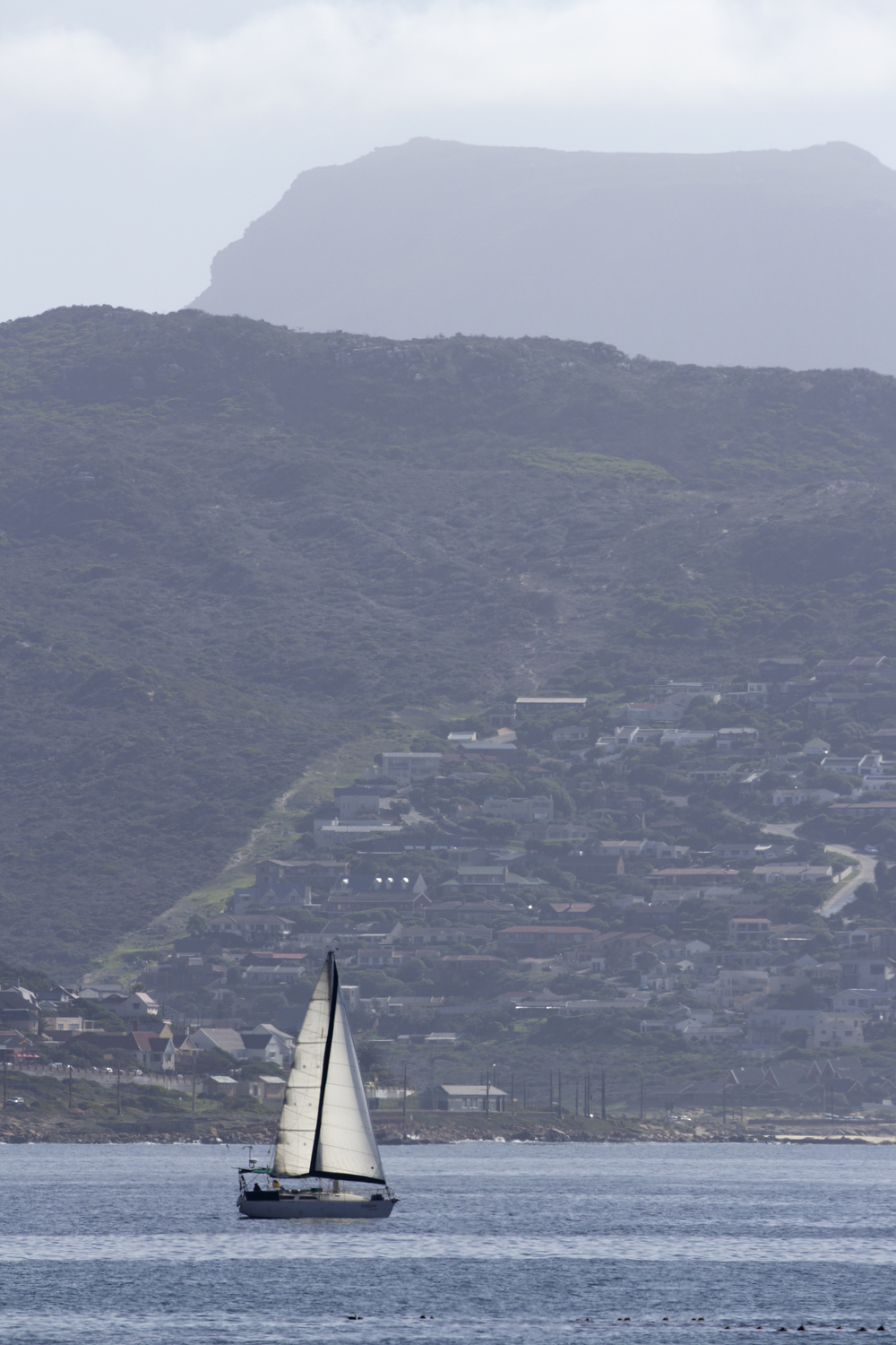 Cape Peninsula Sailboat 2