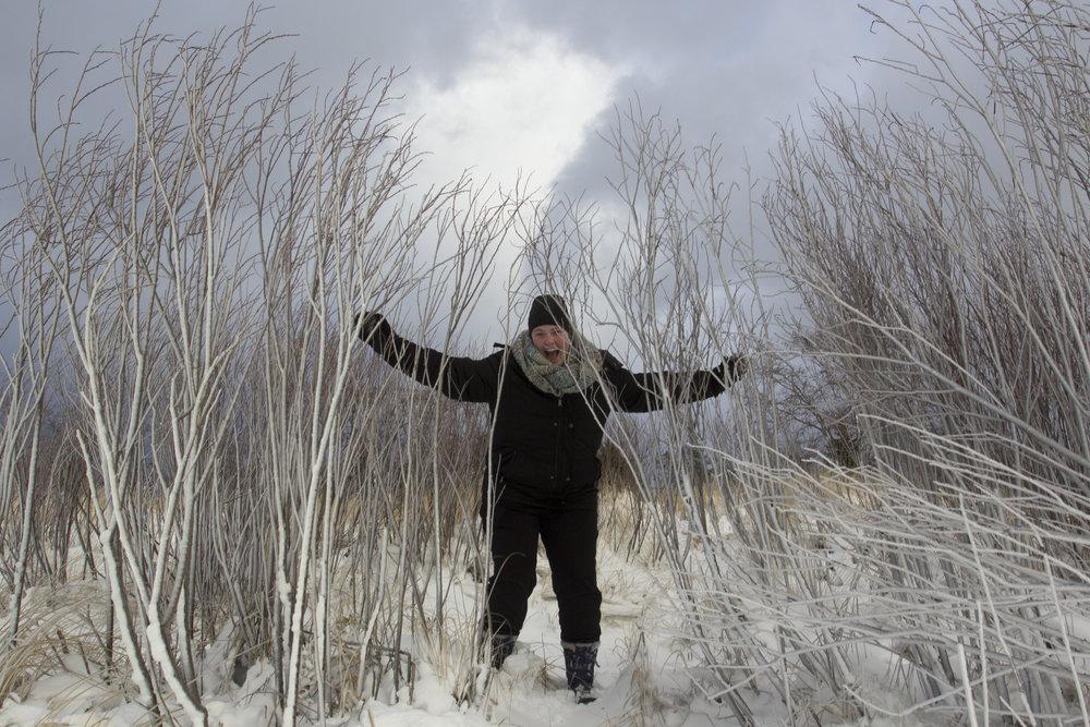 Keegan scrambles through ice covered grasses.