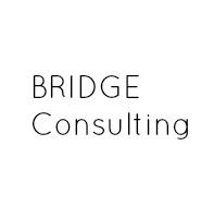 Bridge Consulting.jpg