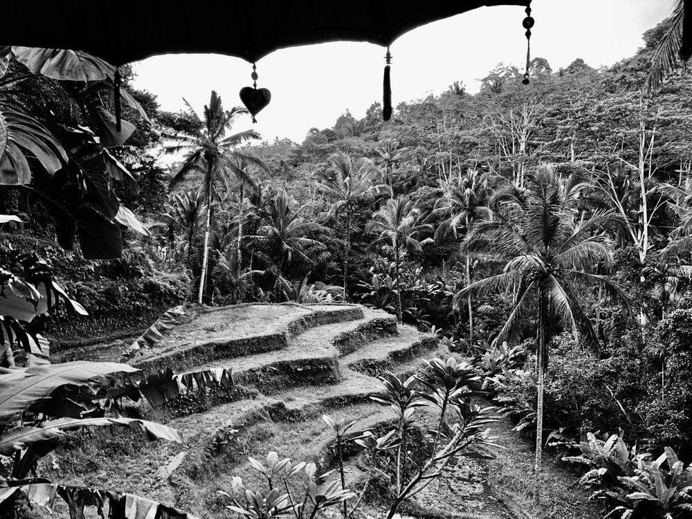 indonesia-2018-9.jpg