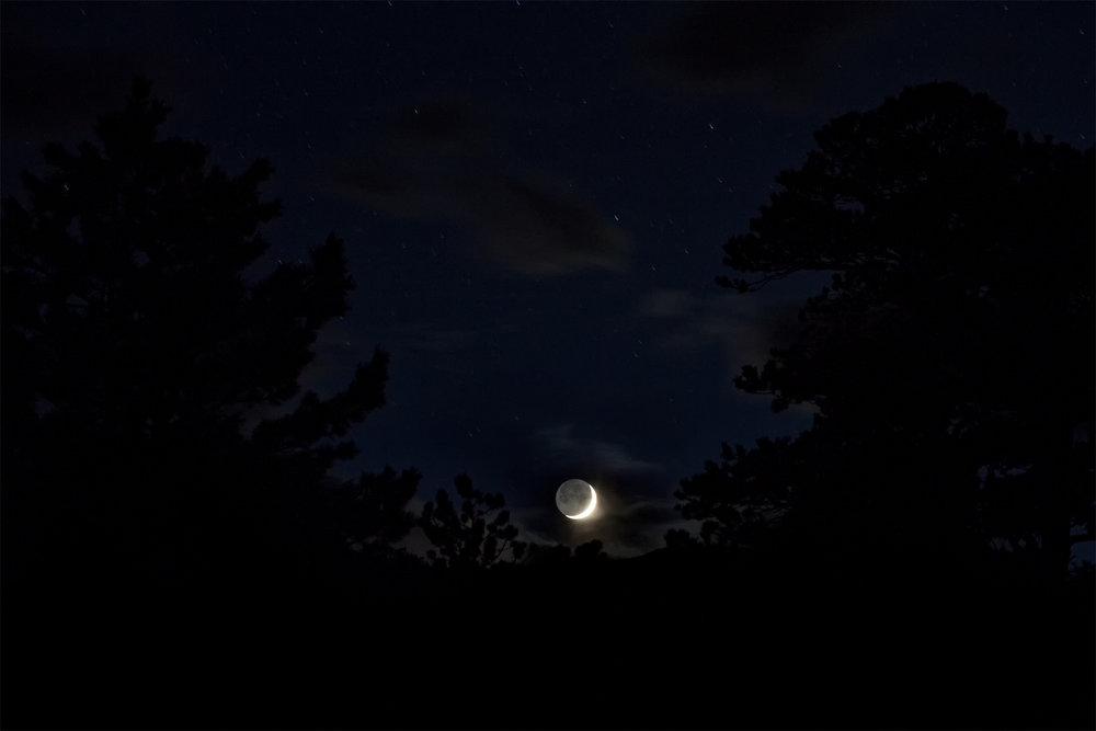 moonsummer17.jpg