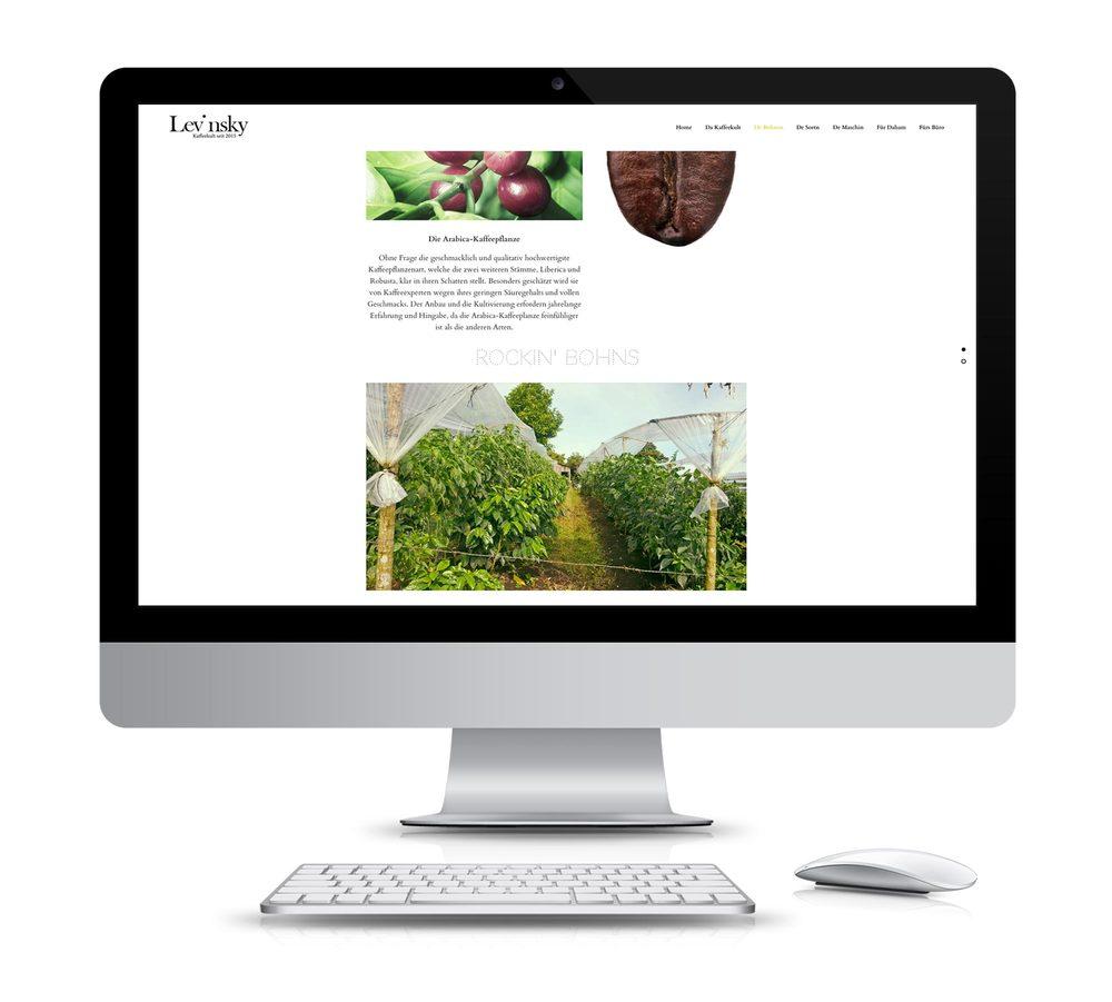 hp-levinsky-designkitchen-desktop3.jpg