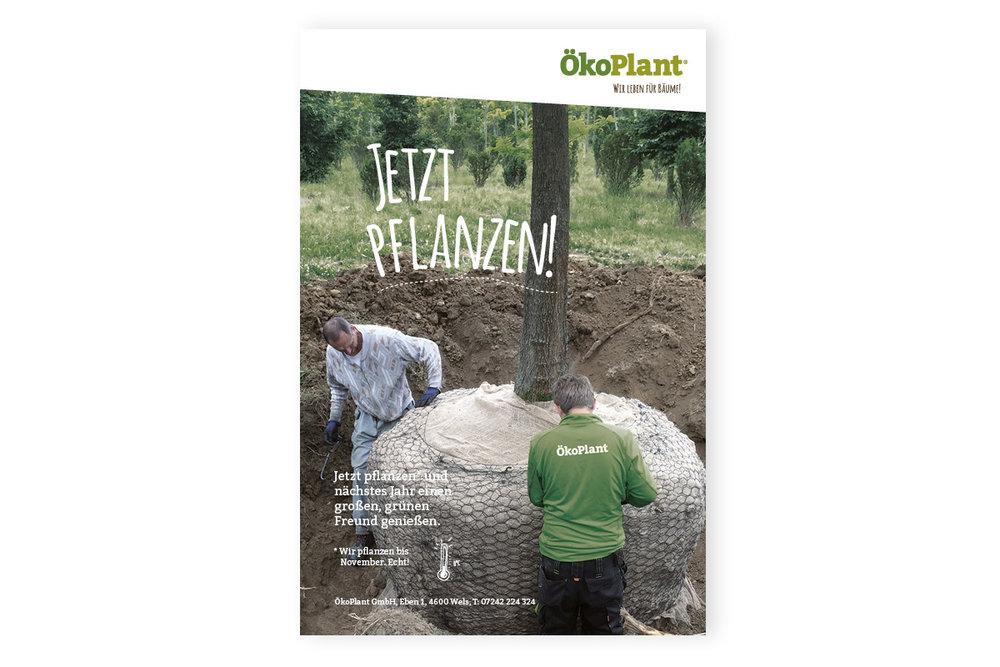 inserate-2017_oekoplant_designkitchen-1.jpg