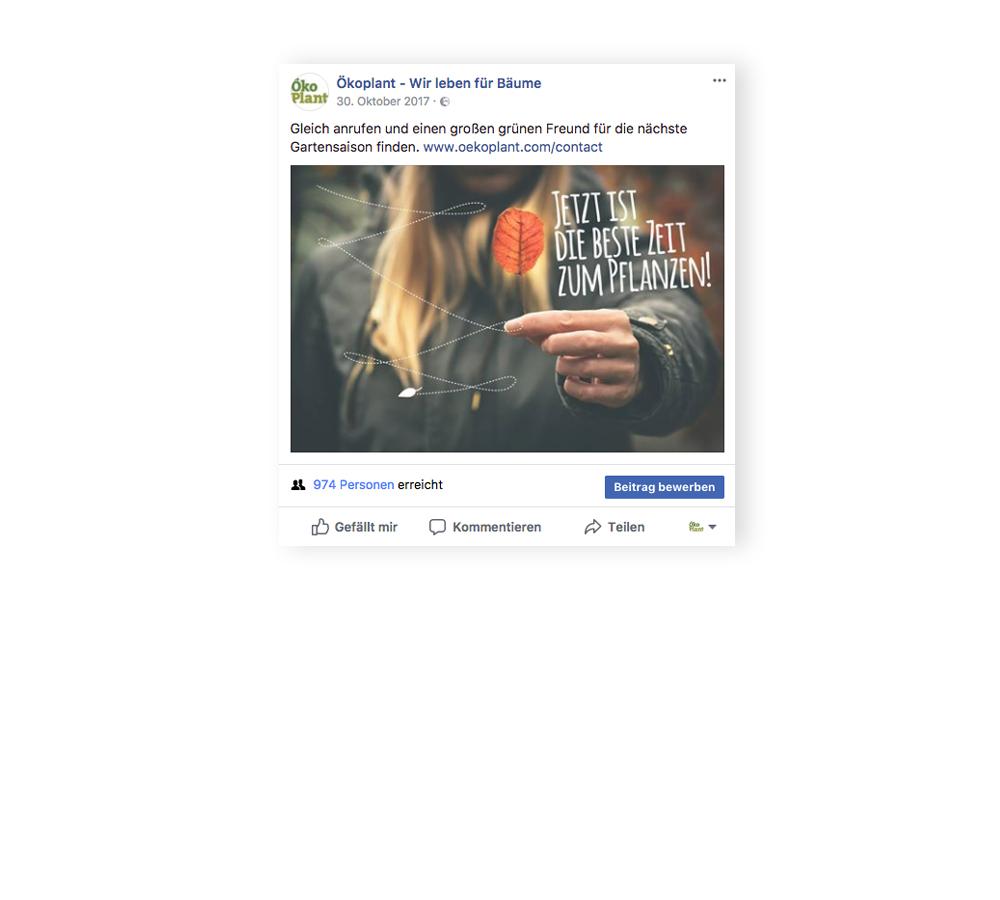 social-media_oekoplant_designkitchen-1.jpg