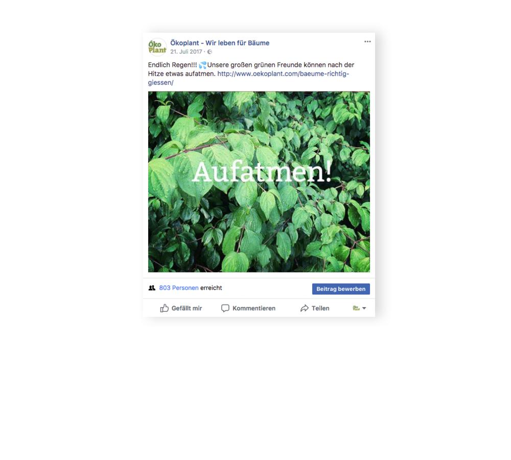 social-media_oekoplant_designkitchen-2.jpg